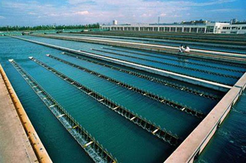 中检环保科技(惠州)有限公司-惠州网站建设